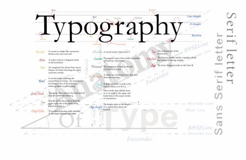 anatomy of typography infographic